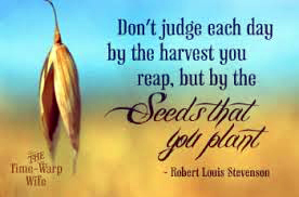 reap what you sow b