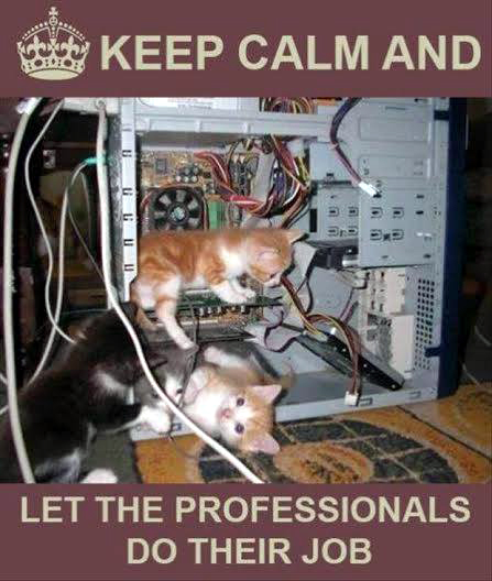 Kitty comp engineers