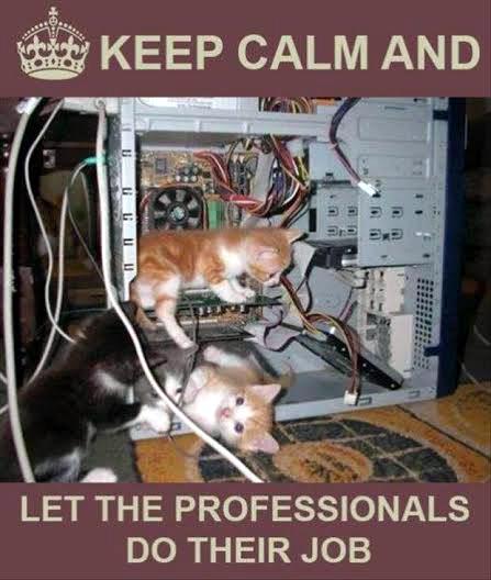 Kitty comp engineers