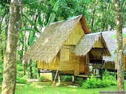 House on Bamboo Stilts