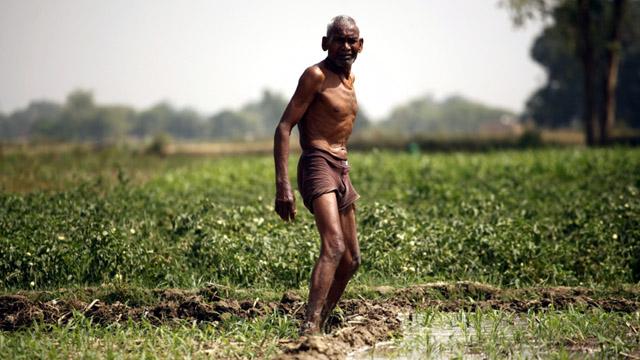 farmer b
