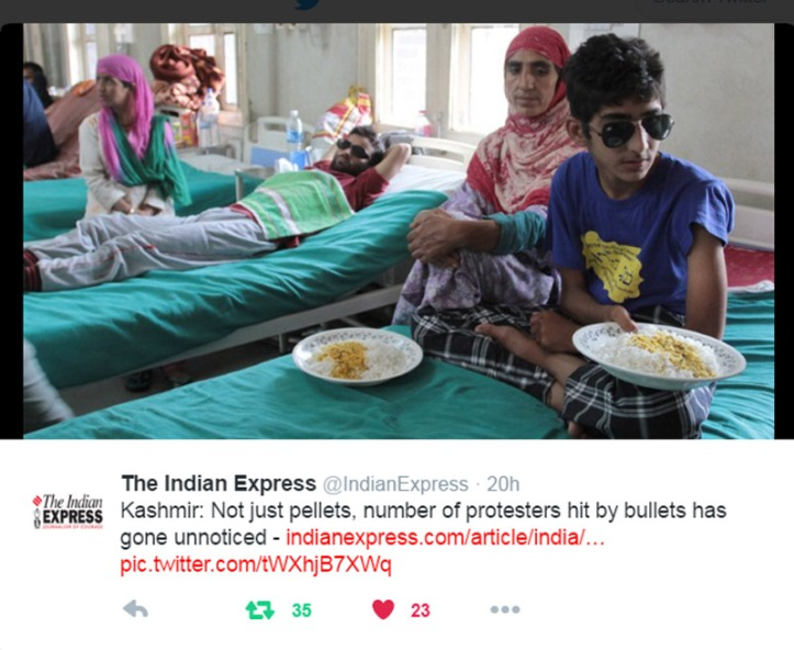 Pellets Kashmir 2016