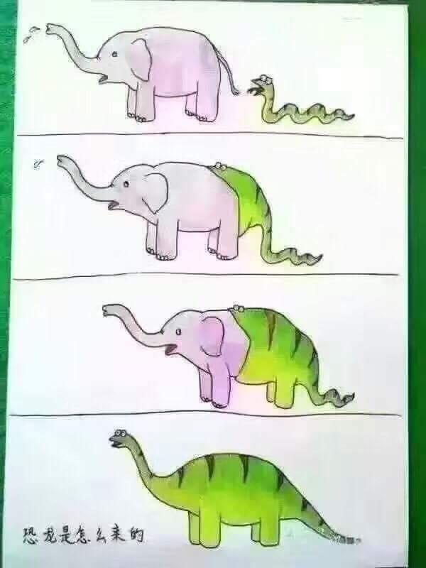 Evolution... Chinese version?!